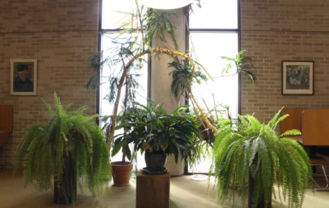 Picky plants reside in the library