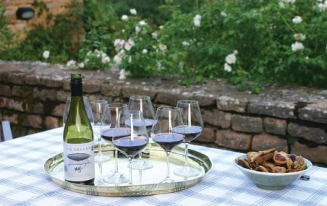 Great Travel Ideas for Wine Lovers