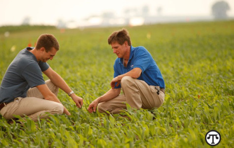 Efficiency In Agriculture—Protecting a Grower's Bottom Line