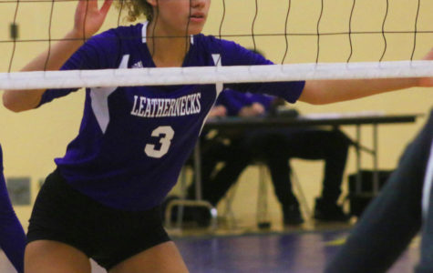 Volleyball takes two of three at Hampton