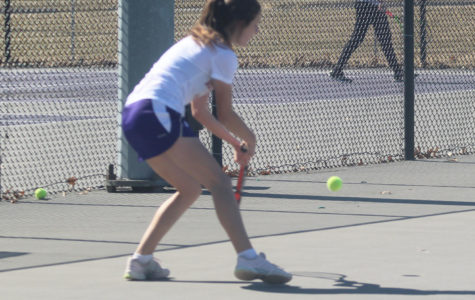 Tennis traveled to Iowa for ITA Regionals