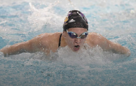 Swimming ends season on a high note