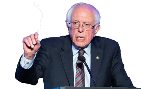 "Will America feel the ""Bern"" in 2020?"