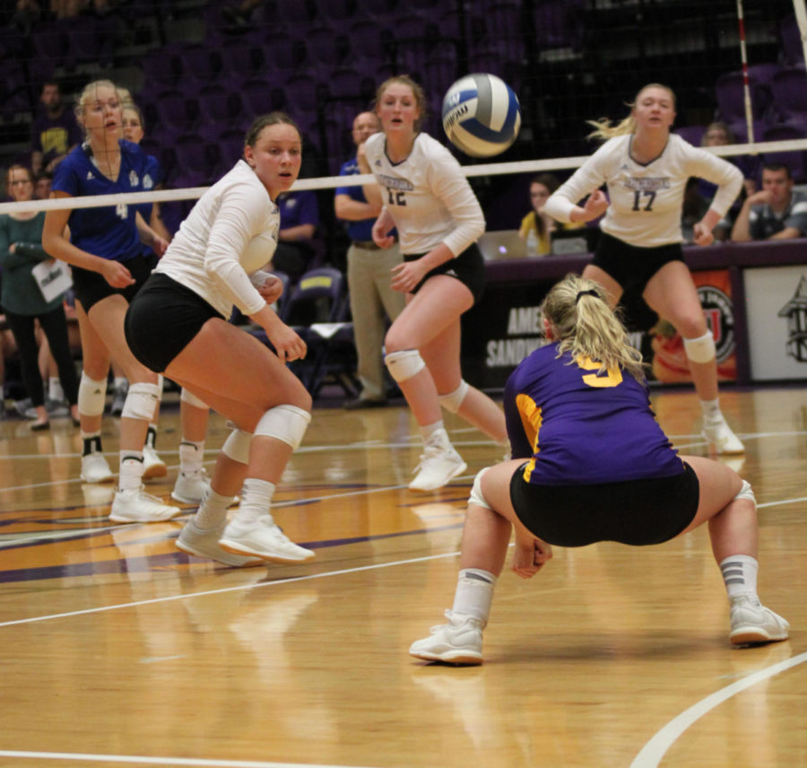 Gabby DePersio gets down for a dig